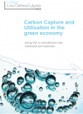 Carbon capture and utilisation in the green economy